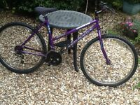 Ladies Mountain Bike, Universal 10 speed, Good tyres
