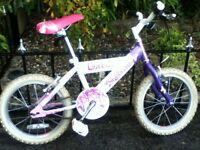 raleigh sunbeam flutter 16 inch bike.