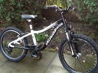 Specialized hotrock 20 child's mountain bike