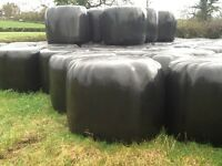 Round Bales Silage and Haylage