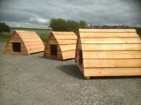 dog pods/ dog kennels 1.2 metres X 1.2 metres , duck pen , chicken coop!