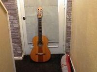 Hofner Guitar, Hf14