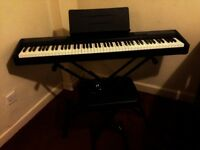 CASIO weighted-key KEYBOARD, stand, pedal, seat