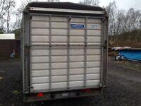 Ifor williams cattle box/ livestock box