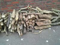 Seasoned logs free to collector