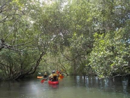Redlands Kayak Tours
