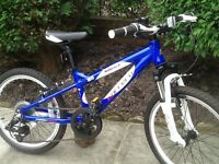 Carrera blast child's mountain bike (excellent condition hardly used)
