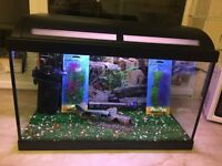 FULL TROPICAL FISH TANK AQUARIUM SETUP + ACCESSORIES FOR SALE