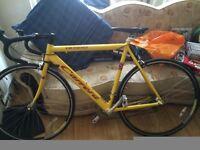 Mens Yellow Carrera Road Bike £150
