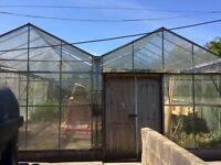 Commercial Greenhouse 40ft x 20ft (DISMANTLED and instructions included) RRP £10,000+++