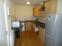 Newport Road, Roath, 2 Bedroom Ground Floor Rear Flat. 1 Ensuite Bathroom