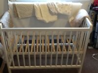 Baby cot and baby bouncer for sale