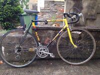 Raleigh Team Banana Vintage Road Bike