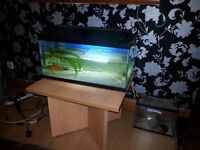 2ft fish tank £15