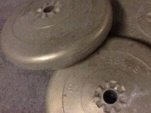 Dumbbells /Weights (25, 10 lb)