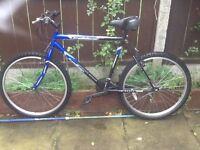 Bike mans trailblazer bike £45 can deliver for petrol