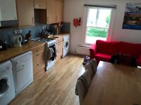 Lovely double bedroom in large Balham 3 bedroom flat