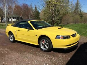 2002 Ford Mustang GT V8