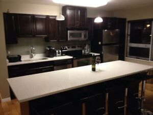 Stunning condo for rent