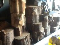 Store dryer fire logs