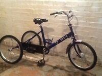 Pashley folding tricycle (blue)