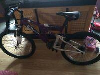 Dunlop duel suspension mountain bike