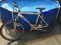 "Adult Lightweight Ammaco Ozone 26"" wheel Mountain Bike"
