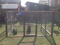 Dog run/cage