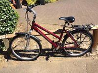 Barracuda bike in excellent condition