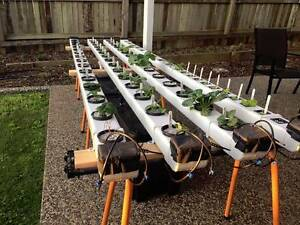 Large NFT Hydroponics Setup Ormiston Redland Area Preview