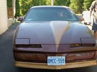 1984 Pontiac Firebird Coupe (2 door)   5 litre