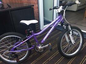 Procyclemilano bike