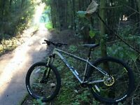 Whyte 901 Medium Mountain Bike