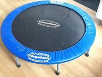 great trampoline in fab condition
