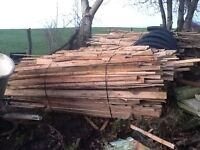 Firewood ( firelighters ) Timber for sale