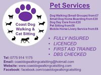 Dog Walker/Small Dog Home Boarder/Pet Sitter (Whitley Bay)