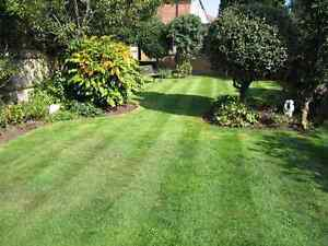 Billy's Mowing Ryde Ryde Area Preview