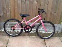 "Girls 20"" Professional Fizzical Mountain Bike"