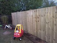 Perfection Gardening Services Fencing and Decking at great prices!