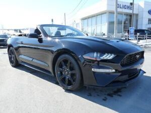 Ford Mustang Cabriolet - Convertible EcoBoost haut niveau décapo