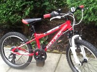Carrera blast child's mountain bike ( like new )