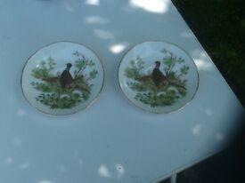 Pair of identical China display plates
