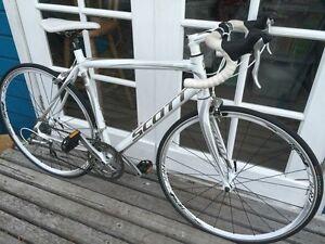 Scott 54cm Womens Road Bike Albany Area Preview
