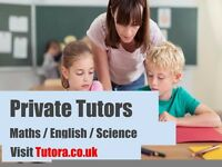 Expert Tutors in Ealing - Maths/Science/English/Physics/Biology/Chemistry/GCSE /A-Level/Primary