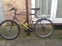 £35 26 wheel 22 frame 15 gears with bike lock night lights parcel carrier water bottle delivery £5