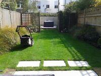 Garden maintenance,hedge trimming,garden cleaning,lawn care ,general garden tidy.jet washing