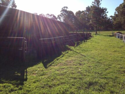 Agistment in baldivis horse and pony friendly. Baldivis Rockingham Area Preview