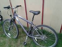 OFFERS.....LADIES MOUNTAIN BIKE. PRACTICALY BRAND NEW. USED 2 OR 3 TIMES AND THEN LEFT IN THE SHED.