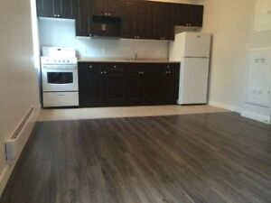 Newly Reno'd /Family Oriented 1 bedroom - 285 College