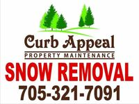 Snow Removal & Fall Clean Ups